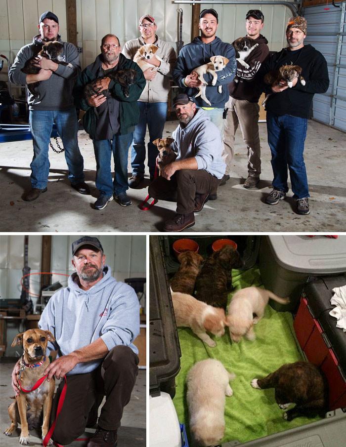 Бездомная собака привела участников мальчишника к своим семерым щенкам. Парни разобрали по домам всех, включая мать животные, спасение, счастливый конец