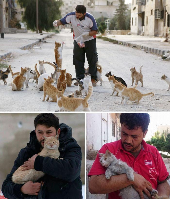 Люди бегут из разрушенного войной Алеппо. Но этот мужчина остался, чтобы заботиться о брошенных кошках животные, спасение, счастливый конец