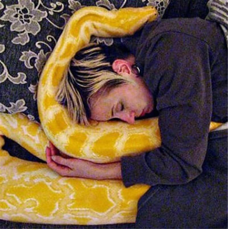 Конечно же находятся любители змей,которые содержат их дома. Например как этот питон выглядит довольно счастливым! животные, змеи, пауки