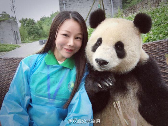 Эта гигантская панда просто обожает делать селфи! животные как люди, панда, селфи, технологии в массы