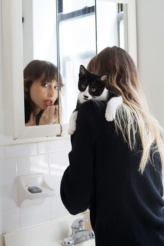 Красивые девушки и их кошечки девушки, животные, коты, фотопроект