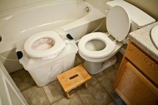 Также можно постепенно учить, поднимая лоток или вымышленный туалет на один уровень с настоящим  животные, милота, приучили к туалету, умные животные, фото