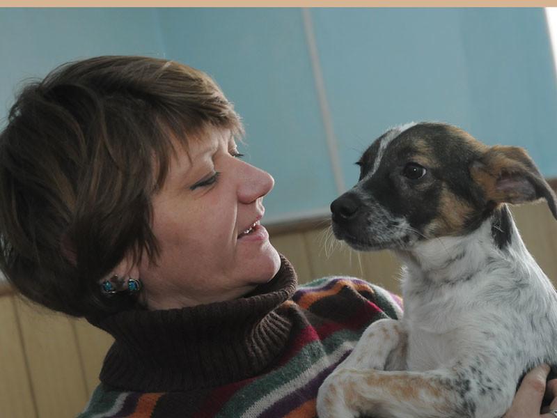 """<p>В приюте находится более 400 собак, я бы с радостью написала вам о каждой. <a href=""""http://dog-omsk.ru/"""">Информацию о всех вы можете найти на сайте приюта Друг.</a></p> животные, интересное, омск, помощь, приют, собаки, спасение"""