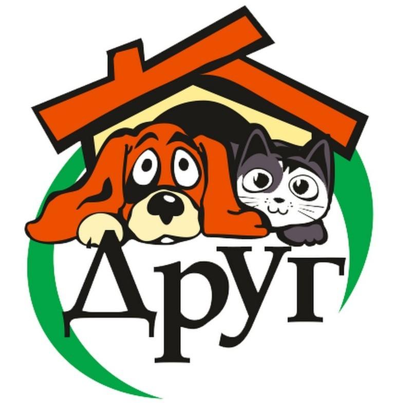 """<p><a href=""""http://dog-omsk.ru/"""">История ОРОО """"Друг""""</a></p> животные, интересное, омск, помощь, приют, собаки, спасение"""