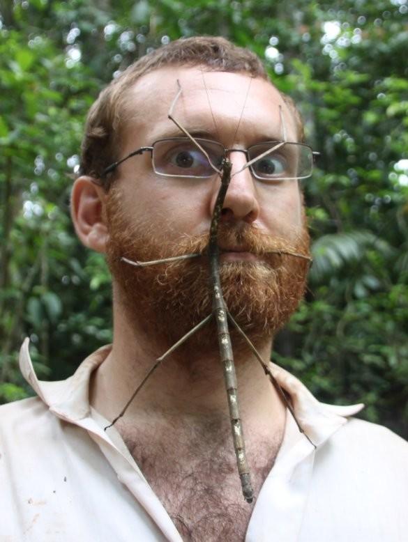 Энтомолог прививает людям любовь к насекомым, сажая их себе на лицо животные, насекомые
