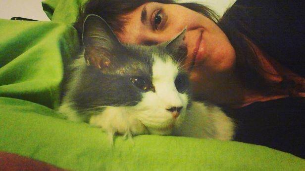 Используют кота в качестве подушки, но никогда не ложатся всем весом, чтобы не раздавить домашние питомцы, коты, кошки
