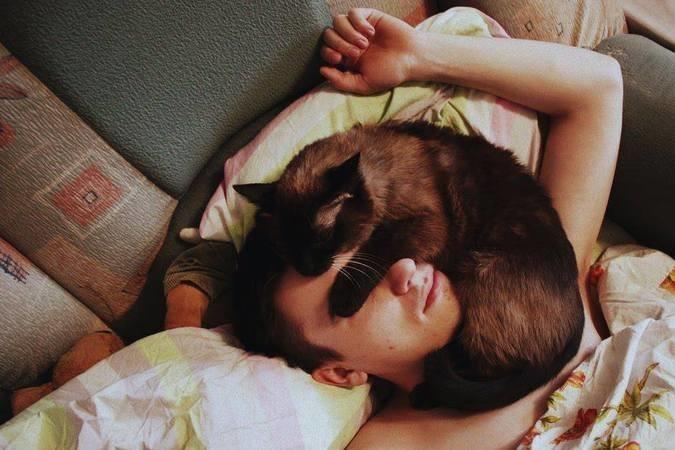 Разрешают коту спать на себе, даже если это неудобно домашние питомцы, коты, кошки