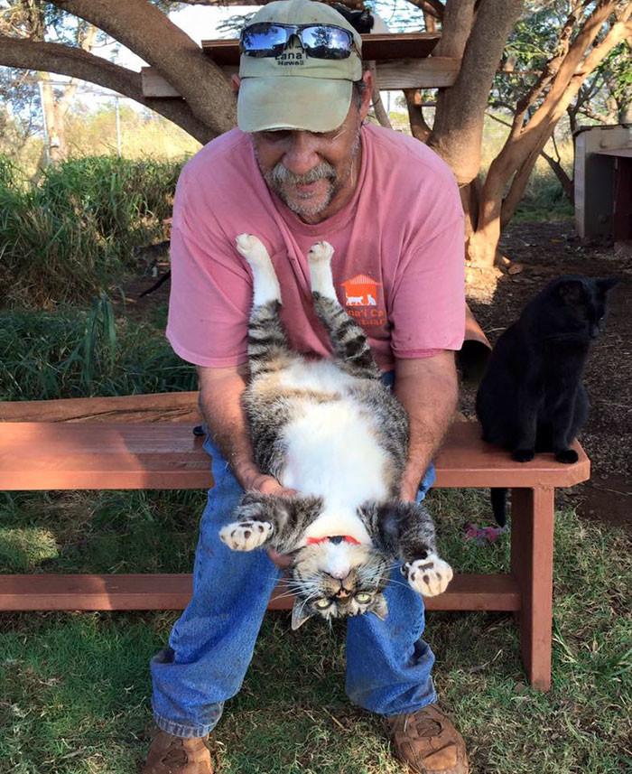 Его посещают люди со всего света гаваи, кошки, приют для кошек