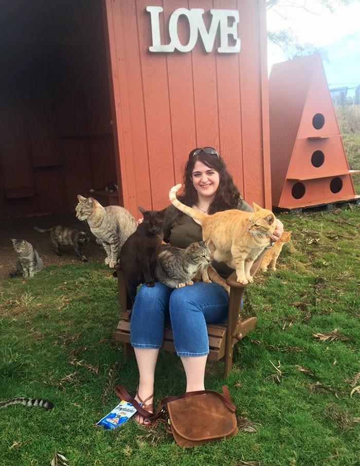 Если кошка не находит своего человека, то она доживает в приюте до глубокой старости гаваи, кошки, приют для кошек