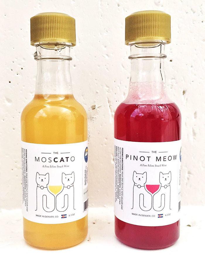 У вашего кота от этого голова пойдет кругом! вино, идеальный собутыльник, кошки, удивительное рядом