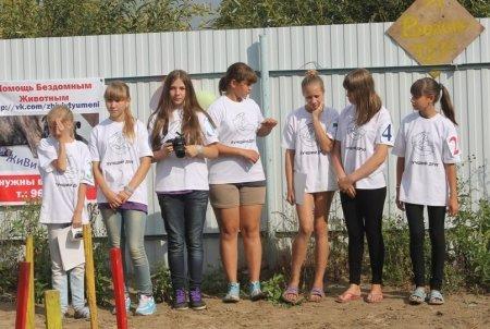 Школьники – постоянные волонтеры приюта с любимцами.  бездомные животные, животные, месте мы можем помочь, помощь животным, приют, приют тюмени, тюмень