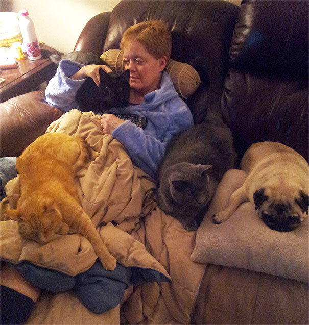 """""""Моей маме недавно сделали операцию на коленях, и ее звери считают своим долгом облегчать ей жизнь"""" домашние любимцы, домашний зоопарк, животные, забавно, отзывы владельцев, поучительно, сколько животных держать, четвероногие питомцы"""