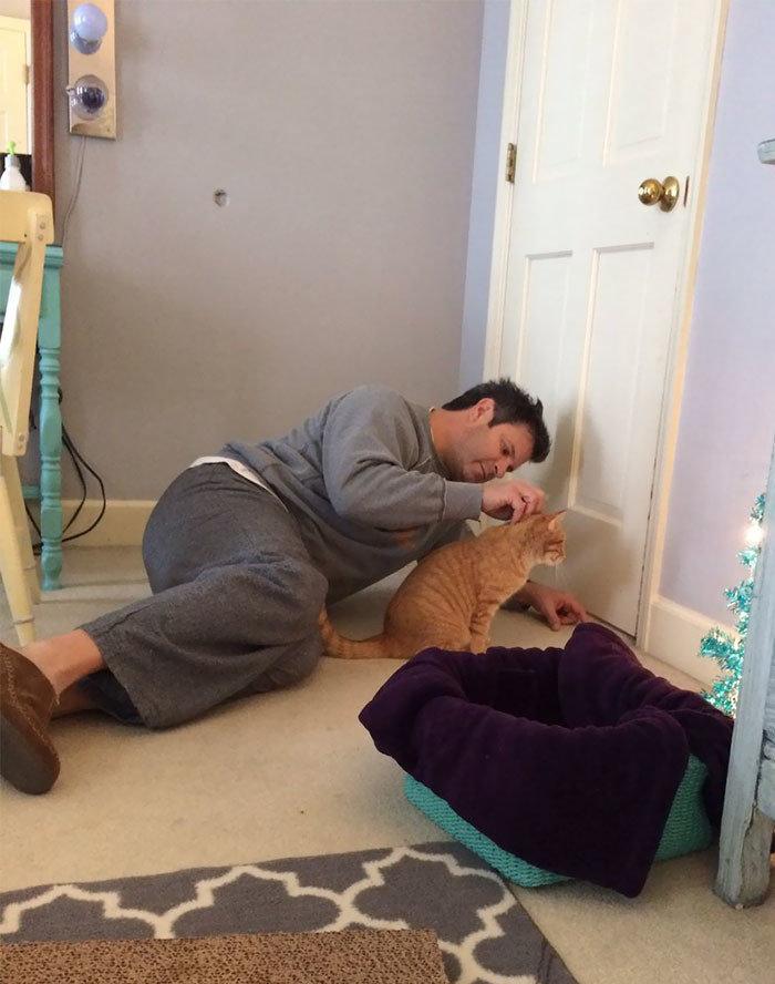 """""""Когда отец говорит, что не любит кошек, но ты все же уговариваешь его разрешить тебе кота, - а потом папа шлет тебе на работу такие снимки""""  животные, забавно, кошки, любовь к животным, обаяние, смешно, фото, эти забавные животные"""