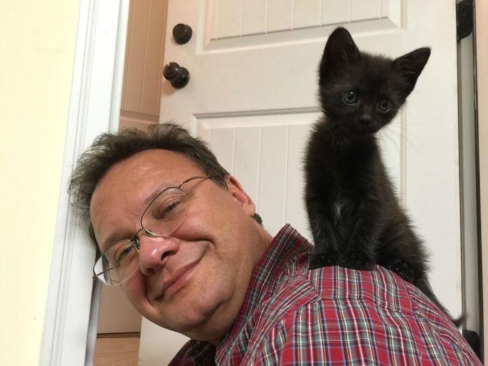 """""""Отец моей подружки говорит, что не любит кошек. Но, похоже, она его переубедила"""" животные, забавно, кошки, любовь к животным, обаяние, смешно, фото, эти забавные животные"""