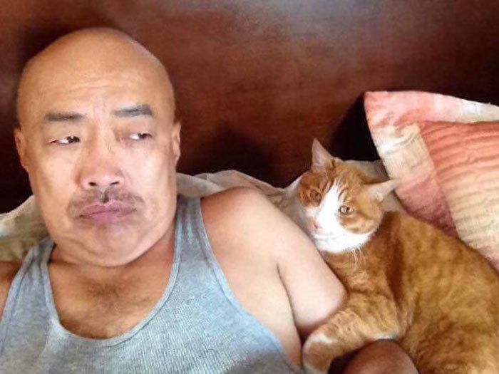 """""""Мой отец ненавидит кошек. Сейчас он следит за моей кошкой и только что прислал мне вот такое фото"""" животные, забавно, кошки, любовь к животным, обаяние, смешно, фото, эти забавные животные"""