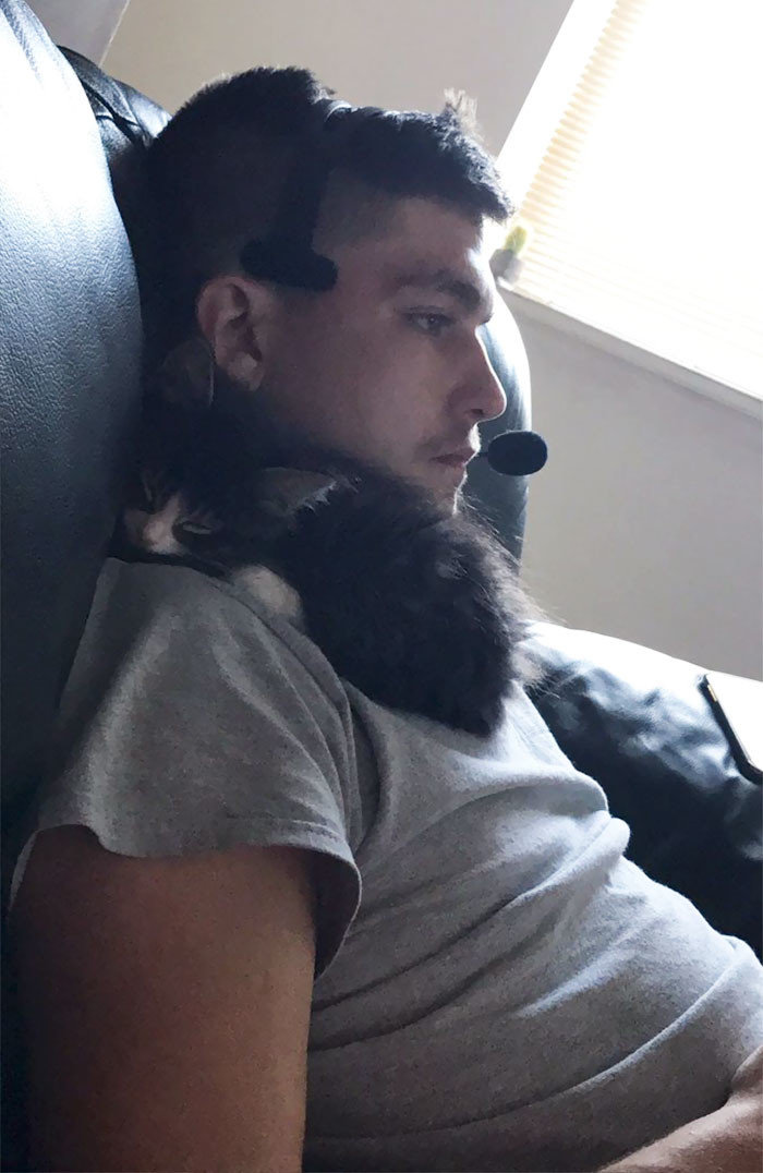 """""""И это - человек, который не хотел кошку!"""" животные, забавно, кошки, любовь к животным, обаяние, смешно, фото, эти забавные животные"""