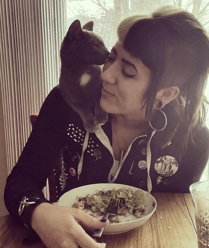 """""""Я вообще-то не фанат кошек, но мама нашла самую общительную бездомную кошку в мире"""" животные, забавно, кошки, любовь к животным, обаяние, смешно, фото, эти забавные животные"""