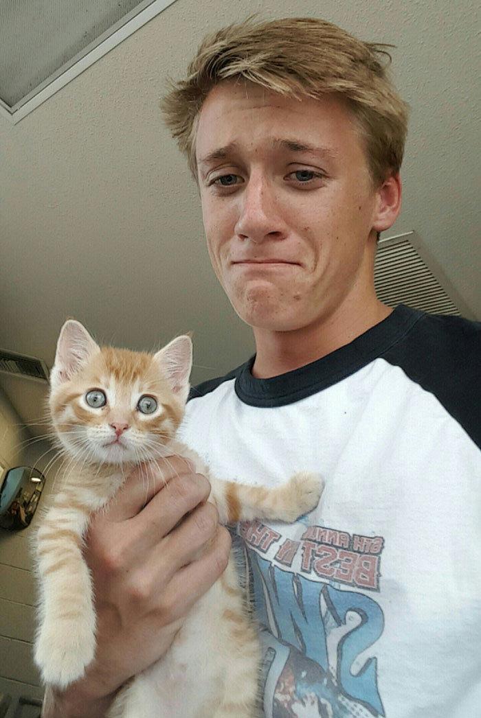 """""""Я всегда считал себя собачником. Но коллега принесла этого маленького парнишку - и я не устоял"""" животные, забавно, кошки, любовь к животным, обаяние, смешно, фото, эти забавные животные"""