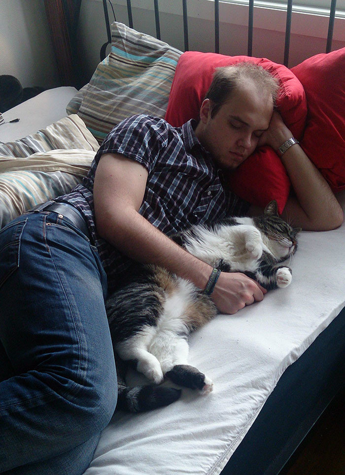 """""""Я ненавижу твоего кота!"""" - говорит он. Ну да, ну да"""" животные, забавно, кошки, любовь к животным, обаяние, смешно, фото, эти забавные животные"""