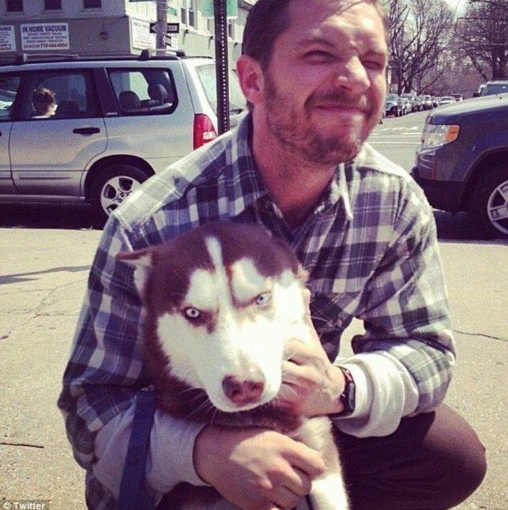 Этот хаски похоже глубоко задумался о жизни актер, животные, кино, милота, собака, собаки, том харди, фильм