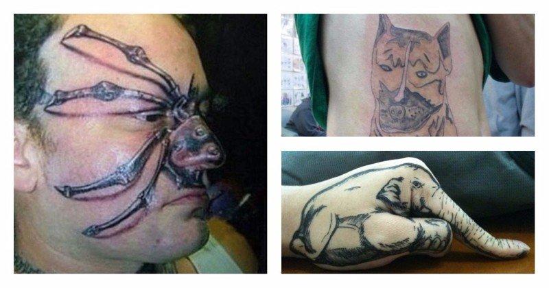 25 забавных фотографий, демонстрирующих худшие татуировки с изображением животных животные, мастер, мастерство, провал, результат, тату, эскиз