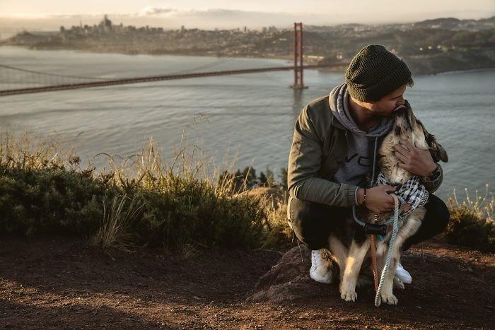 """""""Мы едем домой"""" дружба, животные, любовь, любовь с первого взгляда, первая встреча, пес и я, собаки, хозяева"""