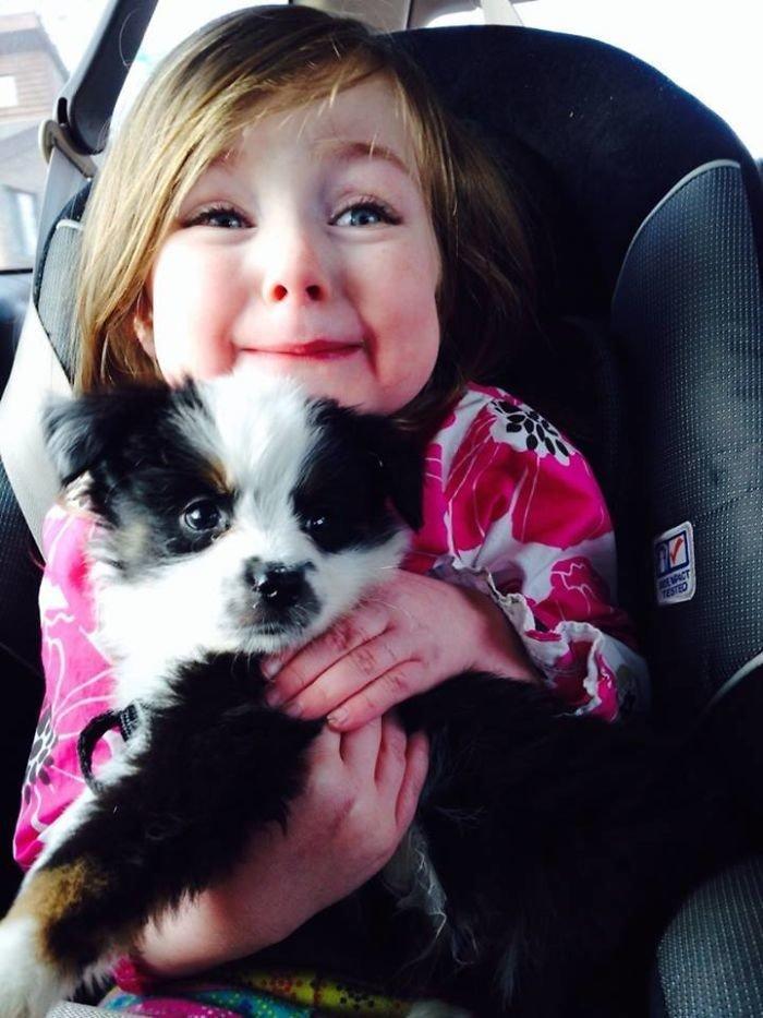 """""""Дочка моего друга и ее подарок на День святого Валентина"""" дружба, животные, любовь, любовь с первого взгляда, первая встреча, пес и я, собаки, хозяева"""