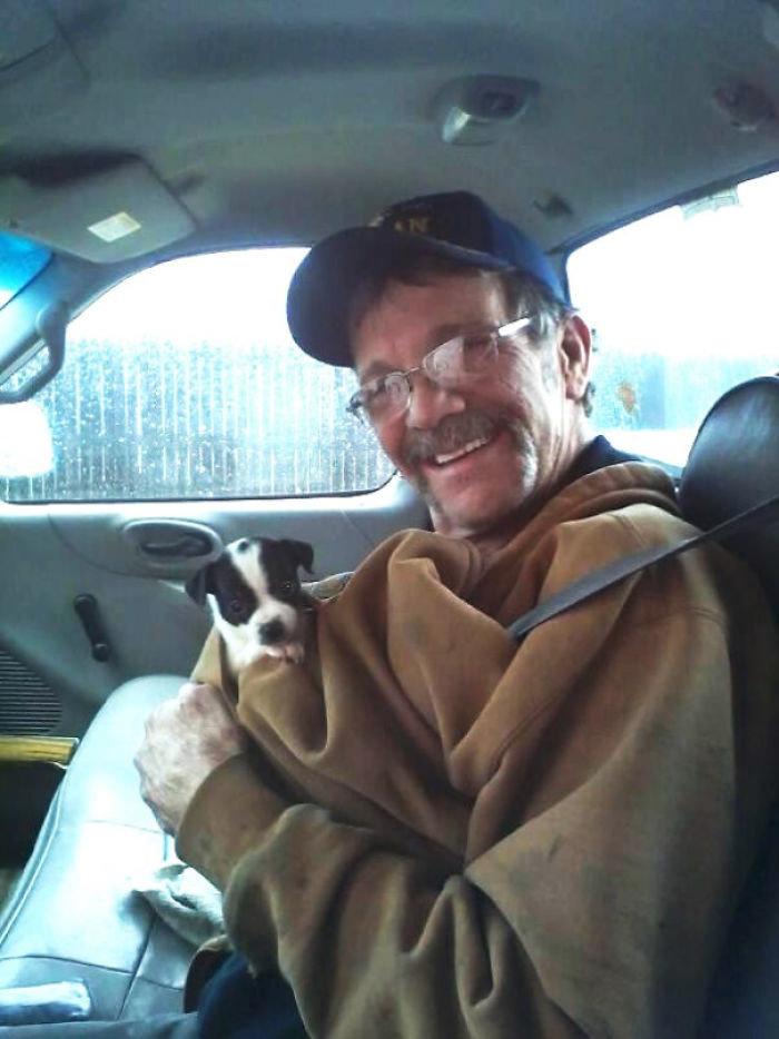 """""""После того, как старый пес дяди умер в 14 лет, тетя привезла ему щенка. Это был сюрприз - дядя думал, что они просто едут за покупками. Вот их первая встреча"""" дружба, животные, любовь, любовь с первого взгляда, первая встреча, пес и я, собаки, хозяева"""