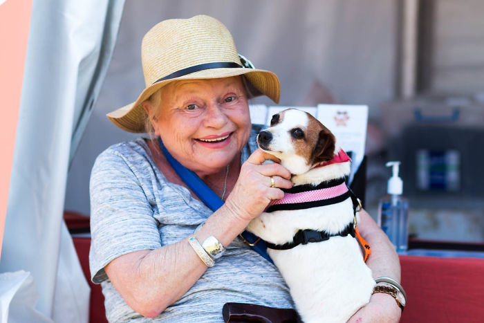 """""""Эта леди только что взяла собачку из нашего приюта"""" дружба, животные, любовь, любовь с первого взгляда, первая встреча, пес и я, собаки, хозяева"""