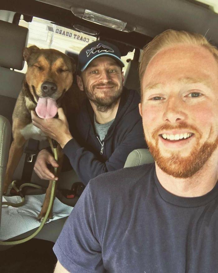 """""""Мы взяли его - и он счастлив!"""" дружба, животные, любовь, любовь с первого взгляда, первая встреча, пес и я, собаки, хозяева"""