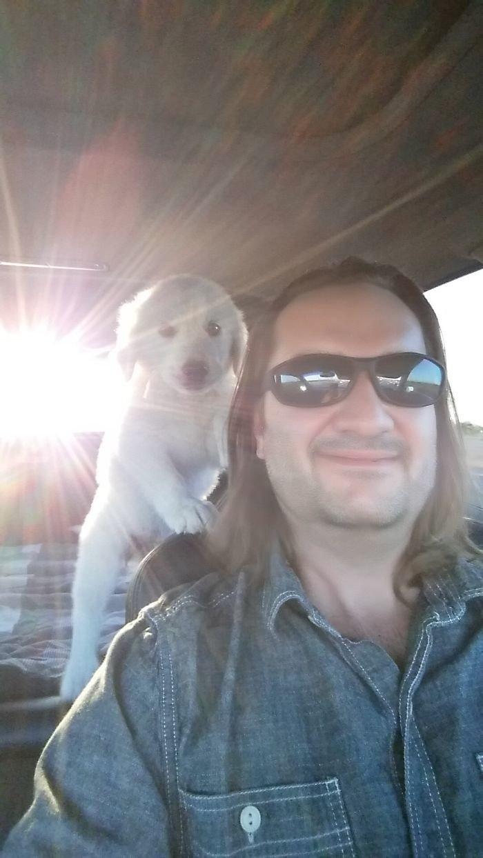 """""""Наш первый день"""" дружба, животные, любовь, любовь с первого взгляда, первая встреча, пес и я, собаки, хозяева"""
