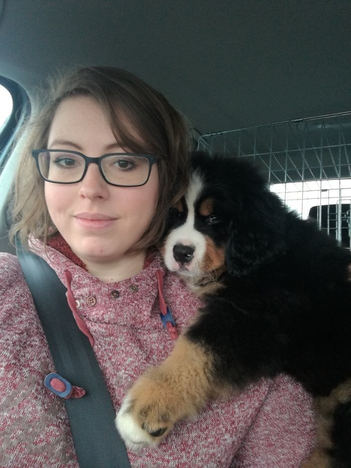 """""""Первое путешествие. Мы едем домой!"""" дружба, животные, любовь, любовь с первого взгляда, первая встреча, пес и я, собаки, хозяева"""