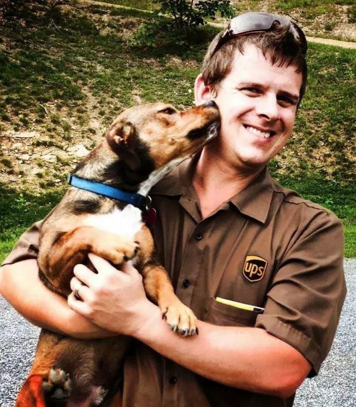 Это Шон Маккаррен, создатель группы UPS Dogs в Фейсбуке домашние животные, животные, собака, собака - друг человека, собака - лучший друг, собаки, фото собак