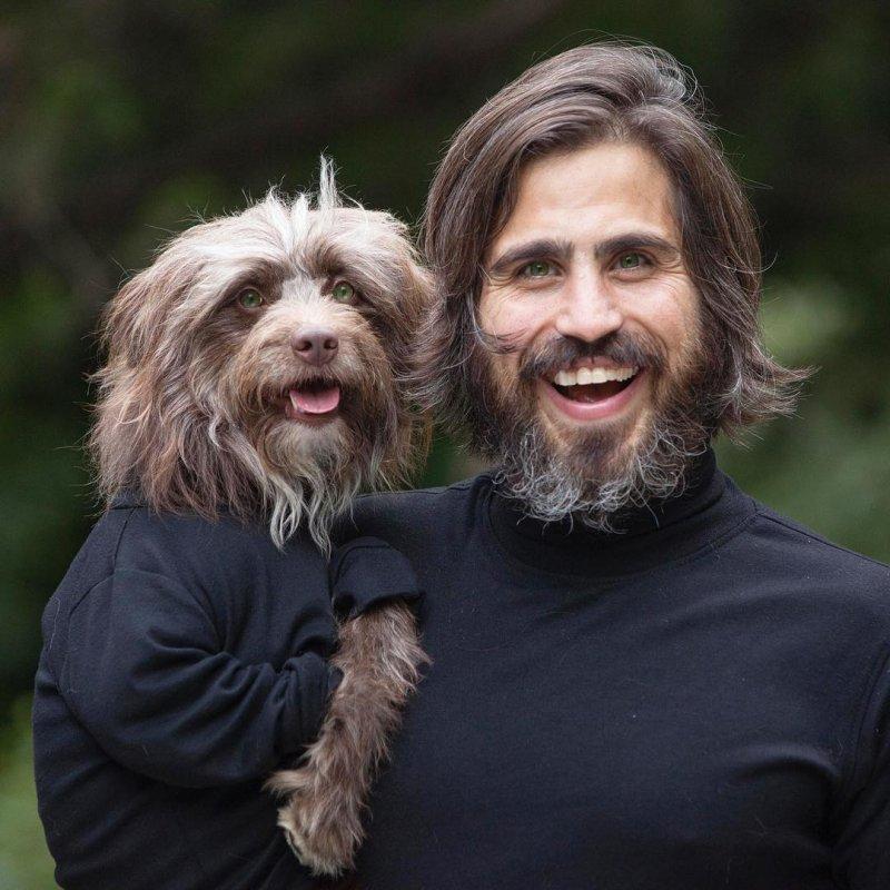 Парень и его собака, чрезвычайно похожие друг на друга  собака, фото, хозяин