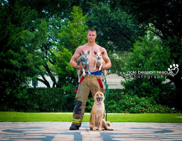Накачанные красавцы помогают бездомным животным найти дом мужчины, приют, собаки, фото