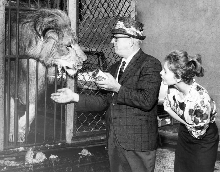 Винтажные снимки животных из архива Общества защиты животных ретро, спасение, фото
