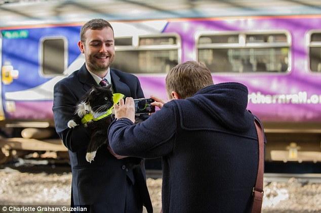 На вокзале работает кошка-контролер  интересное, кошка, работа
