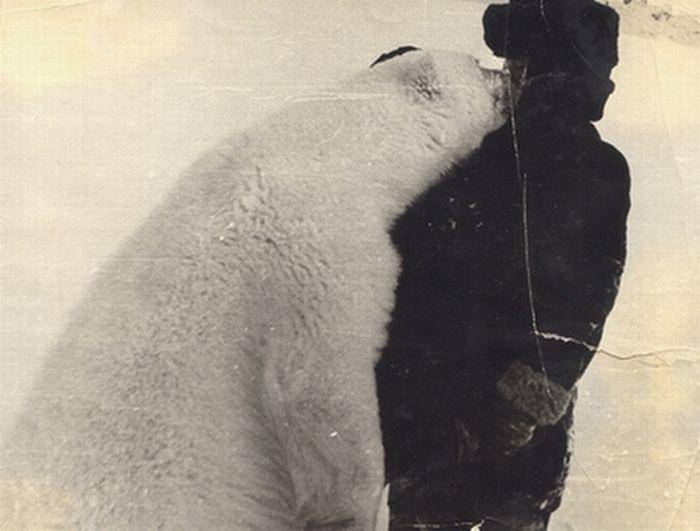 Как пограничники медведей кормили сгущёнкой  медведи, сгущёнка, фото