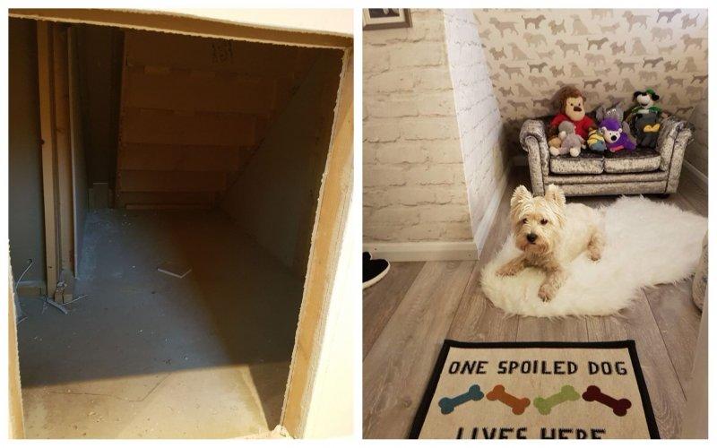 У этой собаки есть собственная комната домик для собаки, животные, сестра, собака