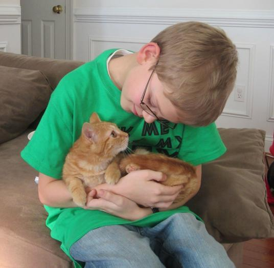 Мы принесли сыну кота, и кот тут же прыгнул к нему на руки. Вот так зарождается дружба. животные, интересное, фото